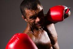 Verticale de plan rapproché d'un boxeur Photo libre de droits