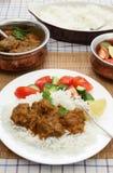 Verticale de repas de boeuf de beurre de Madras Image libre de droits