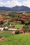 Verticale de terres cultivables du Vietnam Photo libre de droits