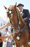 Verticale de vêtement de festivité de cheval de St John Image stock