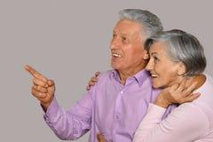 Verticale de vieux couples heureux Image libre de droits