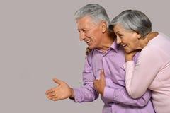 Verticale de vieux couples heureux Photographie stock