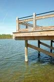 Verticale del bacino di pesca Immagini Stock Libere da Diritti