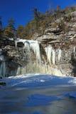 Verticale del lago congelato cadute Awosting Fotografia Stock Libera da Diritti