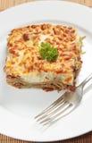 Verticale del lasagne di Homemad Fotografia Stock Libera da Diritti