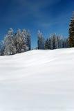 Verticale della cartolina di inverno Immagine Stock