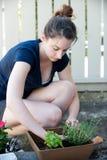 Verticale della donna che pianta le piante immagini stock libere da diritti