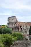 Verticale della natura e del Colosseo Immagini Stock