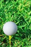 Verticale della sfera e dell'erba di golf Fotografia Stock Libera da Diritti