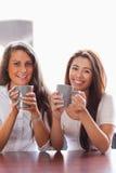 Verticale des amis ayant une cuvette de café Image libre de droits