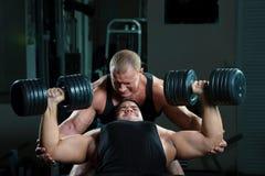Verticale des bodybuilders Images libres de droits