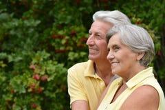 Verticale des couples aînés Images stock