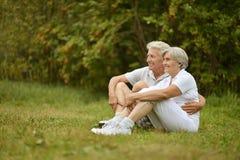 Verticale des couples aînés Photographie stock