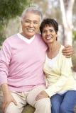 Verticale des couples aînés en stationnement Photos stock