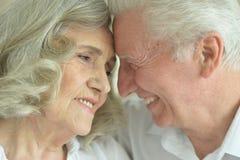 Verticale des couples aînés heureux Photographie stock libre de droits