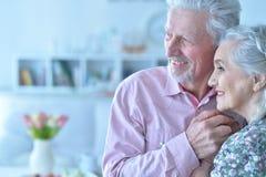 Verticale des couples mûrs heureux Photo libre de droits
