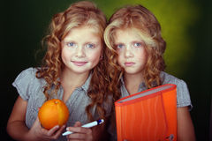 Verticale des soeurs rouges de cheveu photos libres de droits