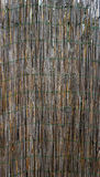 Verticale di bambù del recinto della parete Immagini Stock Libere da Diritti