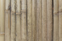 Verticale di bambù della parete Fotografia Stock