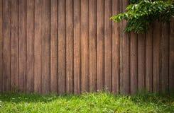 Verticale di legno di lerciume con l'erba dell'albero sul fondo della struttura Immagine Stock Libera da Diritti