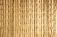 Verticale di sfondo naturale dal papiro Fotografia Stock