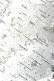 Verticale di struttura della corteccia di albero Fotografie Stock Libere da Diritti