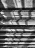Verticale dramatische zwart-witte architectuurtreden Royalty-vrije Stock Fotografie