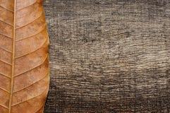 Verticale droge bladeren op oude houten achtergrond Stock Fotografie