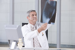Verticale du docteur mâle Photographie stock libre de droits