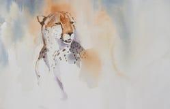Verticale du guépard (geppard) Photo libre de droits