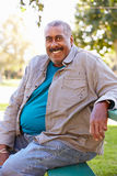 Verticale extérieure d'homme aîné de sourire Photos libres de droits