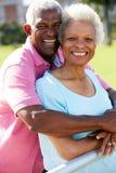 Verticale extérieure des couples aînés heureux Photos libres de droits