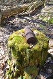 Verticale foto van artillerie whizzbang hoog explosief van de Tweede Wereldoorlog op stomp in bos van Wit-Rusland royalty-vrije stock fotografie