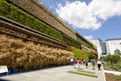 Verticale gewassen in Israel Pavillion, EXPO 2015 Milaan Stock Fotografie