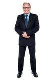 Verticale intégrale d'un homme d'affaires supérieur photos stock