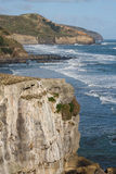 Verticale klippen boven Muriwai-Strand Royalty-vrije Stock Foto's