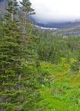 Verticale - le montagne e le valli sono coperte di nebbia in Glacier National Park fotografia stock libera da diritti