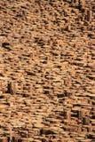 Verticale mening over de einden van het houtlogboek Stock Fotografie