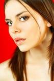 Verticale modèle de Brunette Images stock