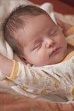 Verticale nouveau-née de sommeil de chéri Images libres de droits