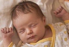 Verticale nouveau-née de sommeil de chéri Photographie stock