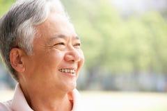 Verticale principale et d'épaules d'homme chinois aîné Photo stock