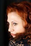 Verticale rouge de femme de cheveu images libres de droits