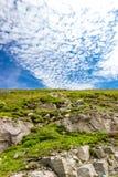 Verticale simple de paysage photographie stock libre de droits