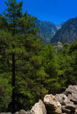 Verticale trillende berg Stock Afbeelding