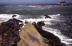 Verticales de côte de l'Orégon Photo stock