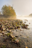 Verticall river pebble beach in Foggy morning Stock Photo
