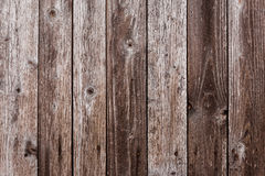 Vertically nailed background of wooden boards Stock Image
