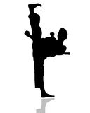Verticle Side Kick. Silhouetted Boy doing a karate kick straight up Royalty Free Stock Image