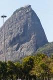 Vertido del flamengo en Río de Janeiro fotografía de archivo libre de regalías